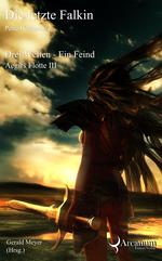 Buch-Cover, Petra Hartmann: Die letzte Falkin